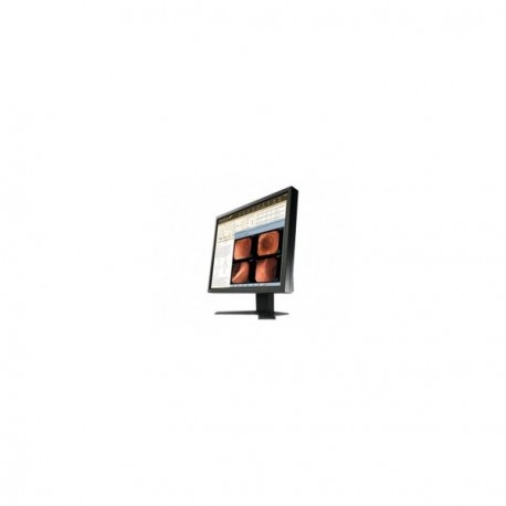 Ecran Eizo RadiForce MX191