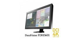 Ecran DuraVision FDH3601